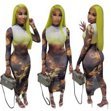 Fashion Print Mesh Long Sleeve Dress QZYD-YD1059