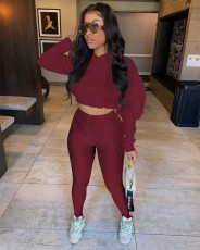 Fashion Casual Long Sleeve Hoodie And Pants 2 Piece Sets QZYD-YD1072