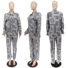 Cashew Print Blouse And Pants Two Piece Sets WSYF-5910