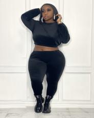 Plus Size Long Sleeve Two Piece Pants Set ZDF-31170