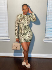 Sexy Printed Long Sleeve Slim Mini Dress YUYF-6119