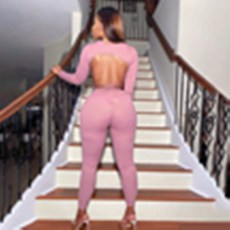 Solid Backless Long Sleeve 2 Piece Pants Set YMT-6250