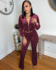 Solid Zipper Coat And Pants Two Piece Sets AMLF-3012