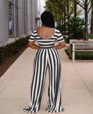 Plus Size Striped Short Sleeve Wide Leg Pants 2 Piece Sets XMY-9310