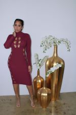 Sexy Hollow Out Long Sleeve High Collar Midi Dress ZMDF-9141