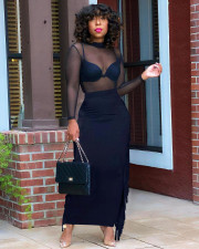 Sexy Mesh Top+Tassel Long Skirt Two Piece Sets (Without Bra) YD-8540