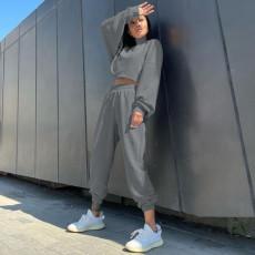 Solid Fleeced High Collar Sweatshirt And Pants 2 Piece Sets WXIN-027