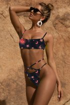 Sexy Printed 2pcs Swimsuit Bikini Sets MJ-296