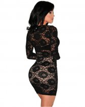 Black Lace See Through Bodycon Dress LX-8563