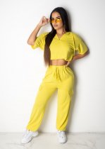 Plus Size Hooded Loose Two Piece Pant Sets PIN-8370