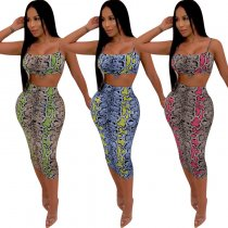 Snake Skin Print Crop Tops And Skirt 2 Piece Set MTY-6133-1
