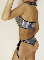Silver Sequined Low Cut Swimwear 2pcs SC-446