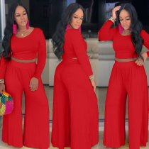 Solid Long Sleeve Wide Leg Pants 2 Piece Suits MA-243