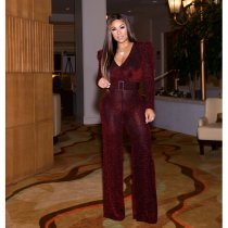 Sexy V Neck Long Sleeve Belted Jumpsuits CM-637