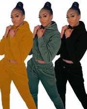 Solid Hooded Zipper Tracksuit Two Piece Sets LQ-5113