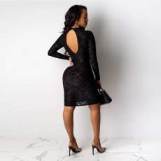 Sexy Mesh See Through Backless Club Dresses SH-3711
