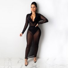 Sexy Mesh Perspective Long Maxi Night Club Dress TE-3888