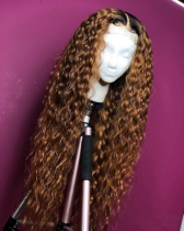 Youmi Human Virgin Hair Pre Plucked 13x6 Lace Front Wig And Full Lace Wig For Black Woman Free Shipping (YM0094)