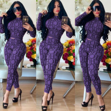 Plus Size Letter Print Long Sleeve Casual Two Piece Outfits KSN-5058