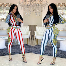 Trendy Leopard Striped Zipper Two Piece Sets HM-6182