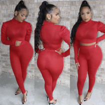 Solid Turtleneck Puff Sleeve Two Piece Pants Set AWN-5069