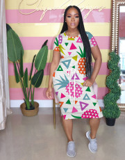 Fashion Fruit Print Midi Dress NIK-116