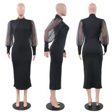 Black Mesh Sleeve Half Turtleneck Slim Midi Dress PN-6561