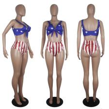 Plus Size Sexy America Flag Print Bikinis Sets SHD-9266