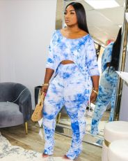 Plus Size Popular Sexy Print Two Piece Set SHA-6145