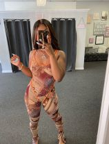 Sexy Printed Bodysuit And Pants 2 Piece Sets Without Mask JH-180