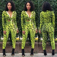 Plus Size Leopard Long Sleeve 2 Piece Pants Set OM-1165