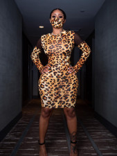 Sexy Leopard Mesh Patchwork Bodycon Dress Without Mask WSM-5206