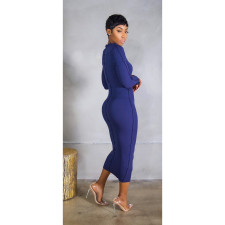 Sexy Long Sleeve Slim Maxi Dress IV-8147