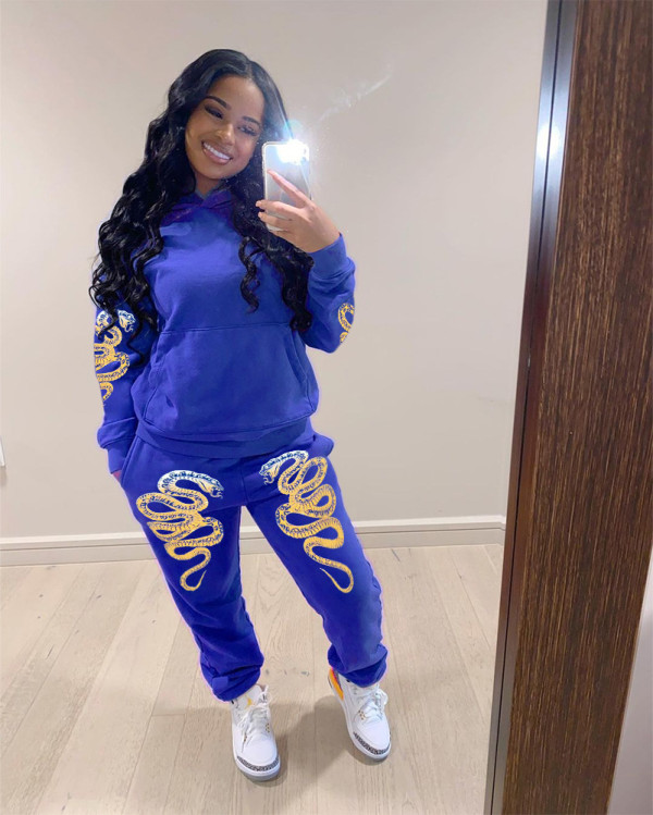 Printed Fashion Hoodie Trousers Two Piece Set SIF-0035