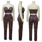 Sexy Leopard Tube Top And Pants 2 Piece Sets YF-9776