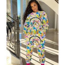 Plus Size Casual Printed Long Sleeve 2 Piece Pants Set MTY-6368