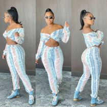 Plus Size Sexy Print Long Sleeve Crop Top And Pants Two Piece Set NSFF-8027