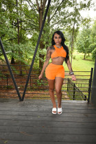 Sports Casual Solid Color Shorts Two Piece Sets SHA-6230