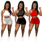 Sexy Halter Backless Two Piece Shorts Set YUF-9075