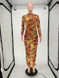 Sexy Printed Mesh Long Sleeve Ruched Maxi Dress NLAF-6042
