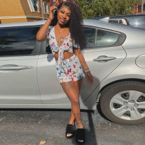 Butterfly Print Tie Up Crop Top And Shorts 2 Piece Sets NLAF-6055