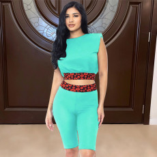 Fashion Casual Print Two Piece Sets SGXF-6015