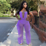 Solid Color Bodysuit And Mesh Pants Two Piece Sets YINF-88801
