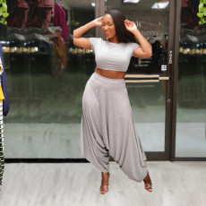 Solid Crop Top And Loose Harem Pants 2 Piece Sets SFY-2112