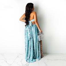 Printed SplIt Sexy Halterneck Long Dress CYA-9045
