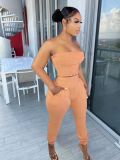 Solid Tube Top And Pants Two Piece Suits TR-1163