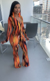 Sexy Printed V Neck Long Sleeve Jumpsuit ZMDF-9125
