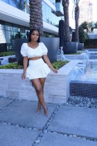 Fashion Solid Color Ruched Skirt Two Piece Sets CXLF-KK813