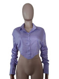 Solid Long Sleeve Irregular Shirt Top MDUO-M065