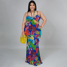 Plus Size Floral Print Backless Sling Maxi Dress NNWF-7280
